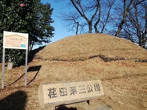 荏田富士塚