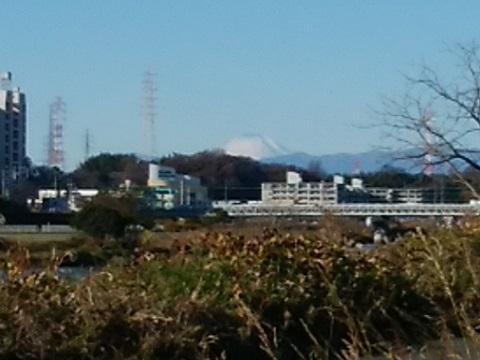 早淵川富士山
