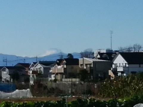 池辺農業専用地域富士山