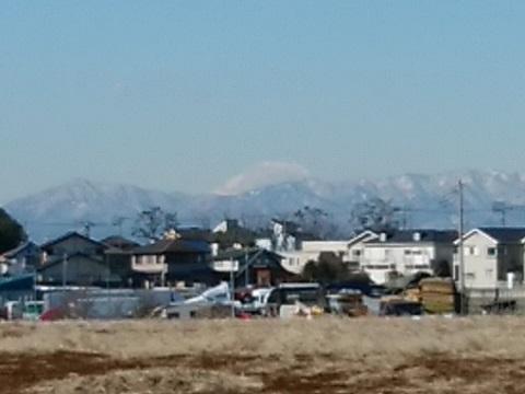 池辺市民の森富士山