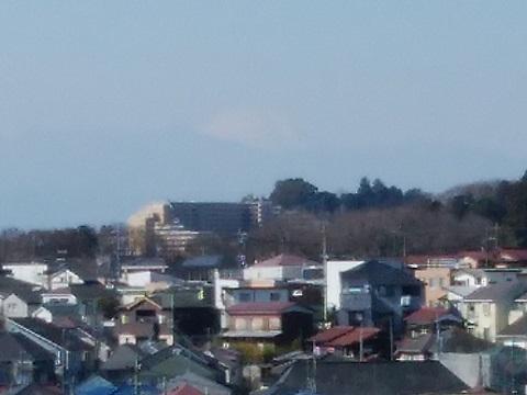 生田ふれあいの森富士山