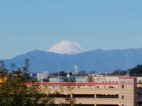 常倫寺墓地富士山