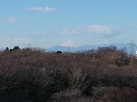 梶山1丁目富士山
