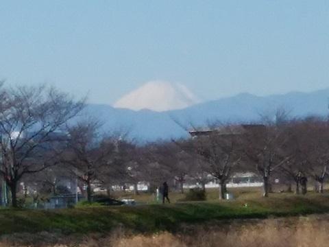 """川向町土手富士山"""""""