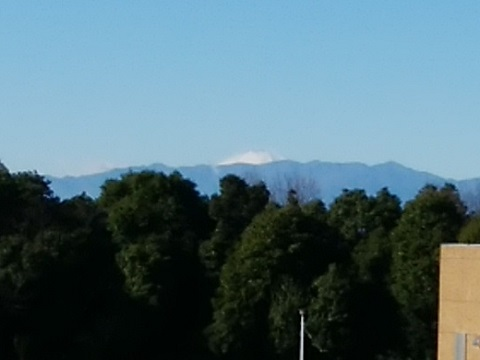 都筑港北霊園富士山