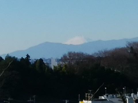 新羽丘陵公園富士山