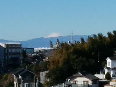 野川の富士山