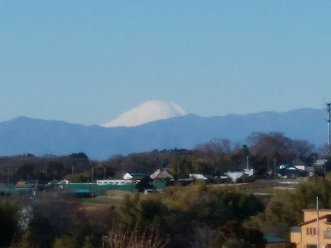 折本町の高台富士山