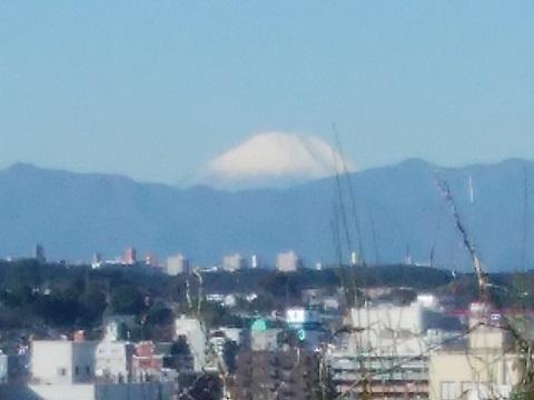 江戸宮原農業専用地域富士山