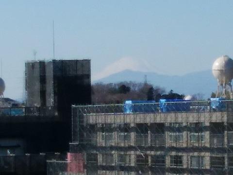 篠原町の高台富士山