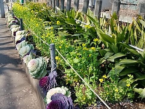 宿河原花壇