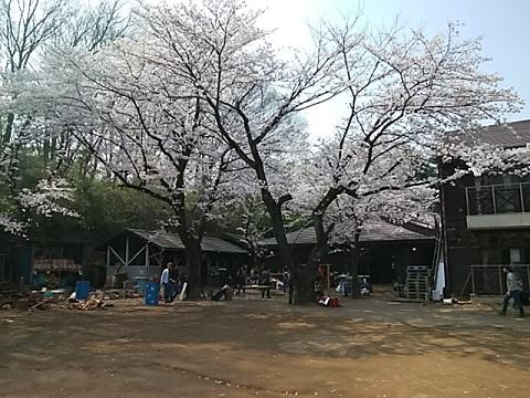 黒川青少年野外活動センター
