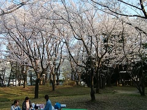 虹ヶ丘公園