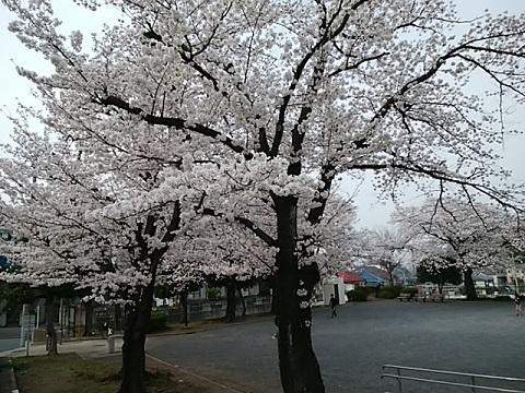 上山町南公園