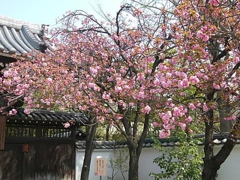 延命寺関山
