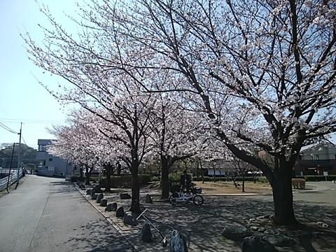 久地梅林公園