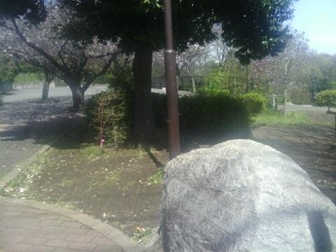 松見みはらし公園