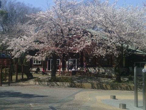 神大寺中央公園