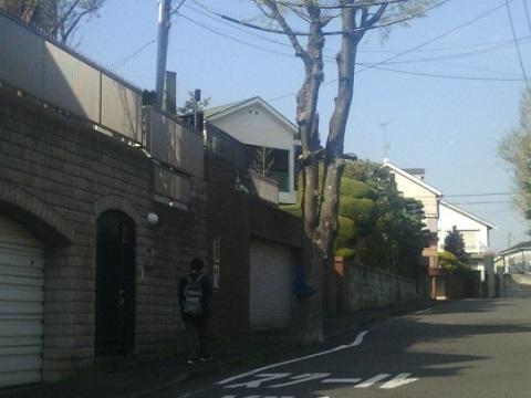 白幡周辺の住宅地
