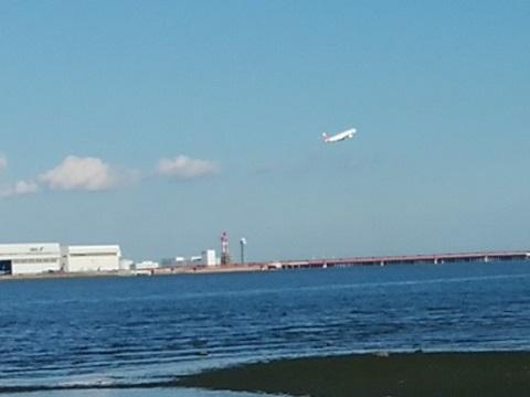河口から羽田空港