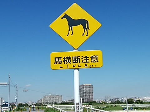 馬横断注意
