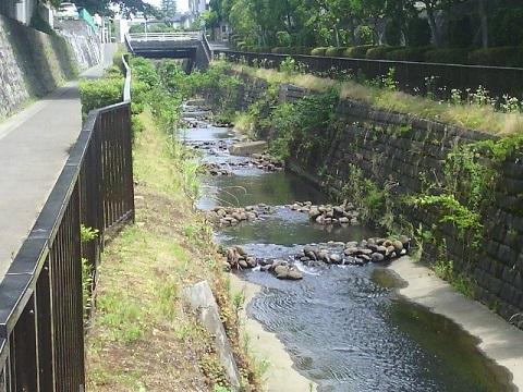 もみの木台付近の黒須田川