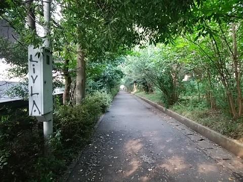 浅野町緑道