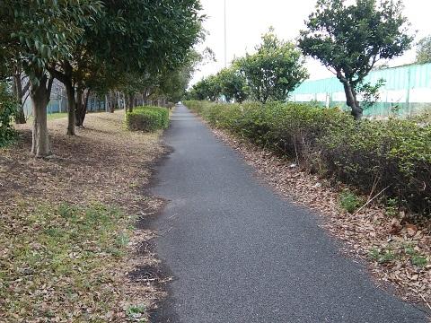 東扇島緑道
