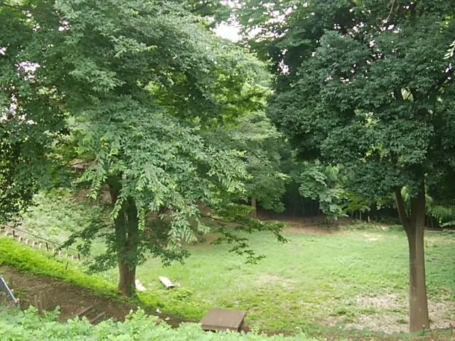野川ふれあいの森