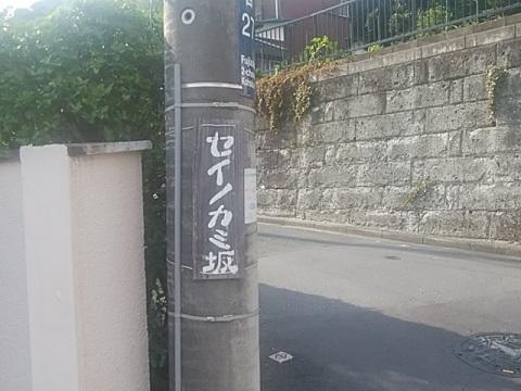 セイノカミ坂