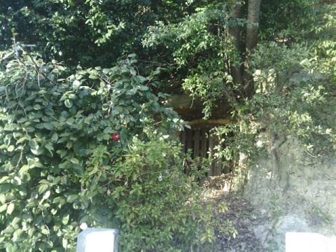 金蔵寺裏墓群