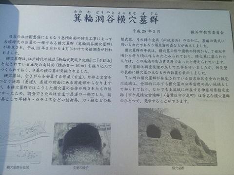 箕輪洞谷横穴墓群