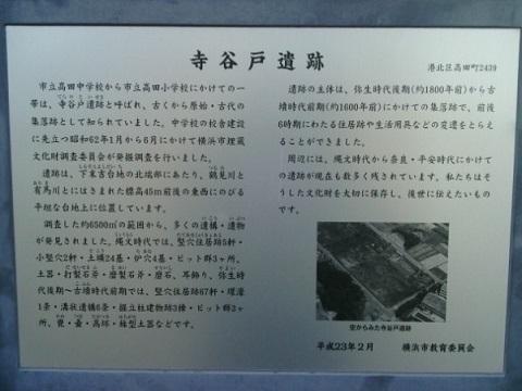 寺谷戸遺跡
