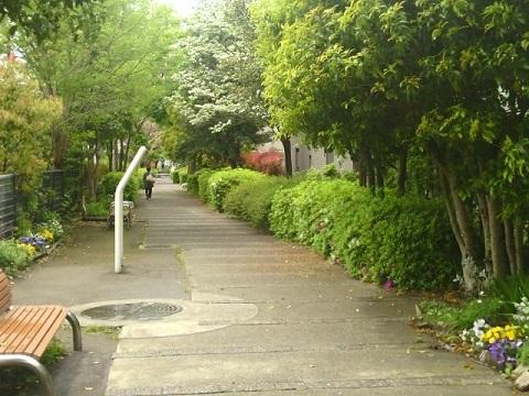 倉部谷戸遊歩道