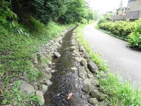 長津田みなみ台緑道