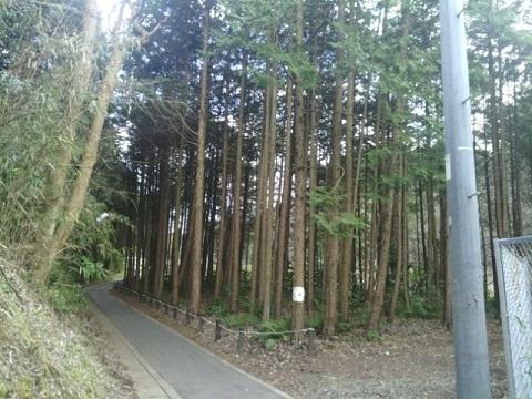 横浜動物の森公園