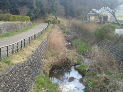 梅田川中流