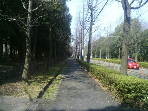 菅生水沢遺跡