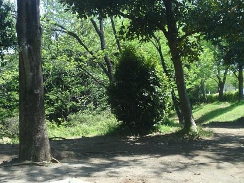 宮崎第一公園