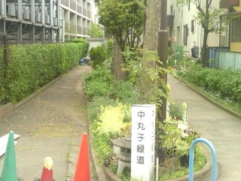 中丸子緑道