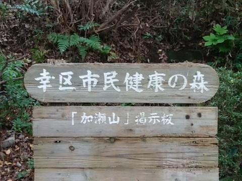幸区市民健康の森