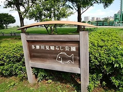 多摩川見晴らし公園