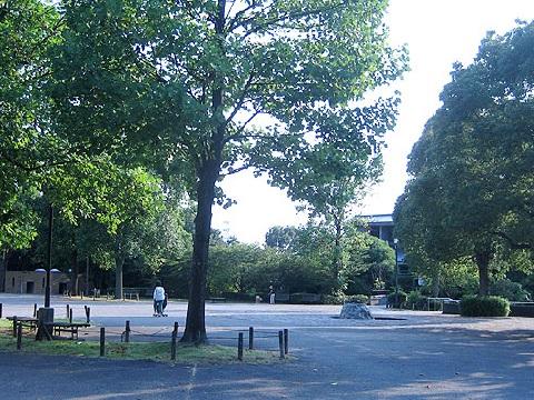 多摩東公園