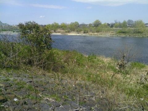 宿河原縄文時代低地遺跡