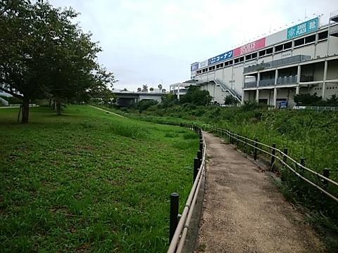 早淵川親水広場
