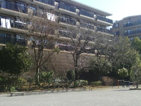 八千代田公園