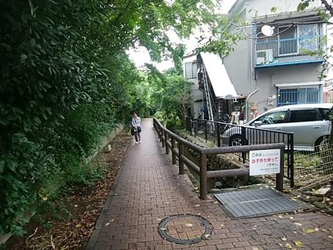 入江川せせらぎ緑道