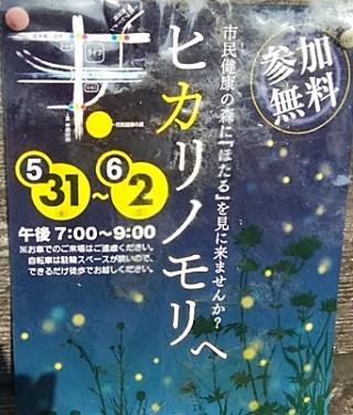 井田市民健康の森鑑賞会