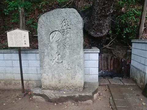 師岡熊野神社のの池