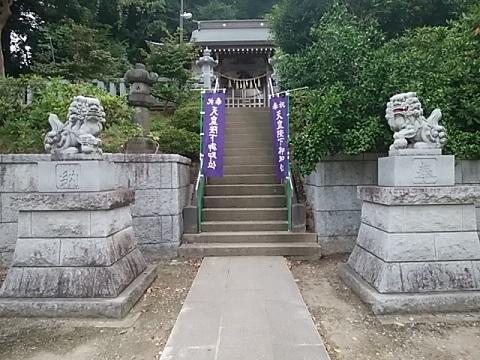 樽町杉山神社狛犬